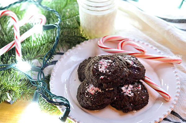 Peppermint Mocha Cookies_pile plate CU-0107.jpg