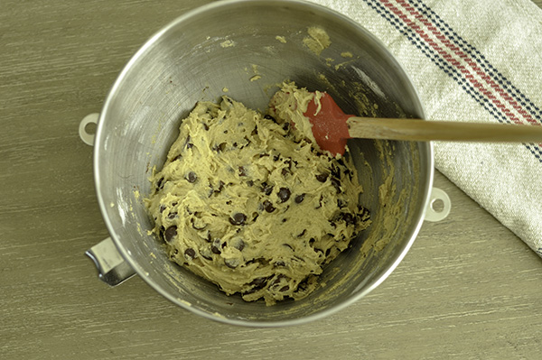 Salted Butter Tahini Chocolate Chip_cookie dough bowl.jpg