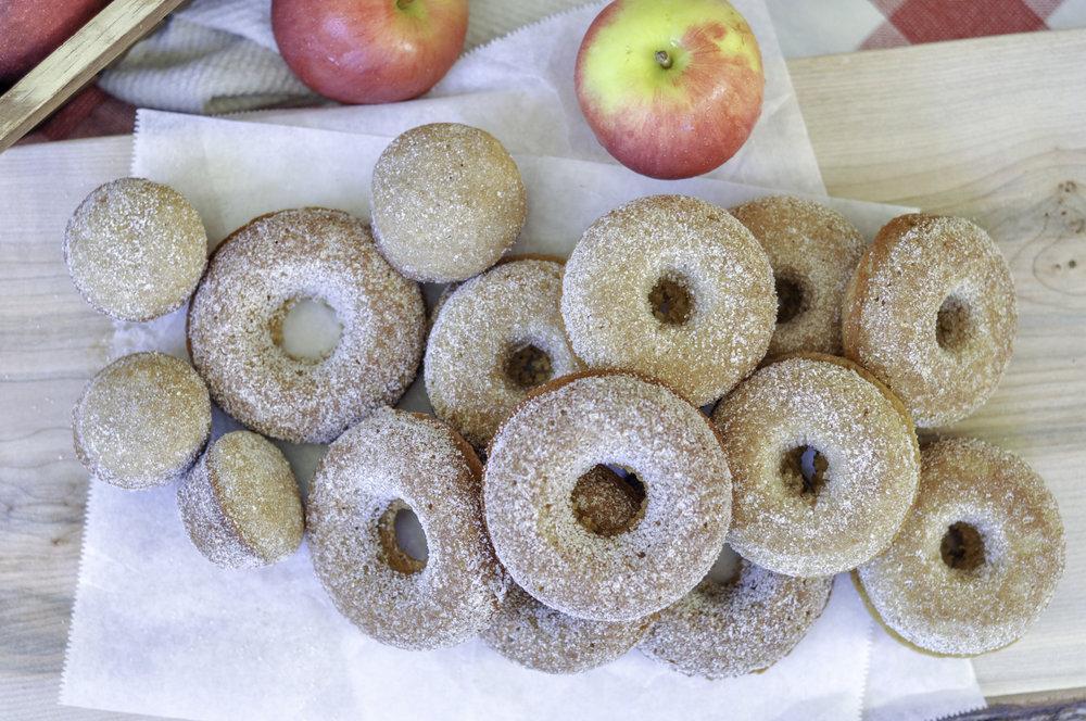 Boiled Apple Cider Donuts_full pile overhead.jpg