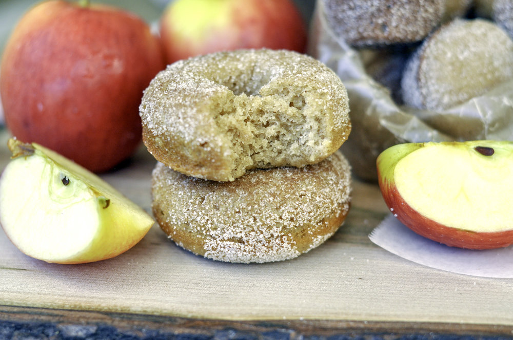 Boiled Apple Cider Donuts_stacked bite.jpg