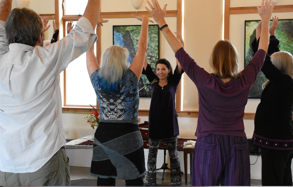 Teaching - With joyful awe at the power of sound and voice, Gina has lead workshops on voice and healing in the US and Canada since 1995. She is known for facilitating even the most reticent folks to find joyful, embodied freedom in their voices and also to find their own silent voice within. She has worked extensively with youth and adults primarily in the US and Canada.