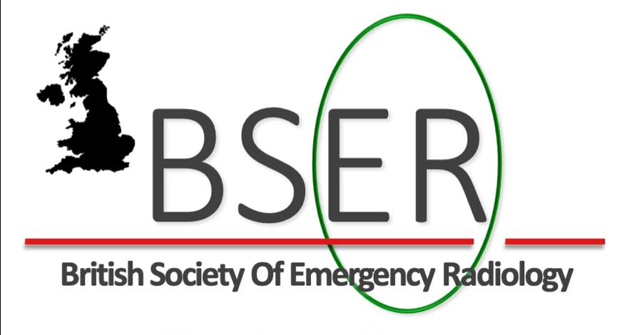BSER logo.png