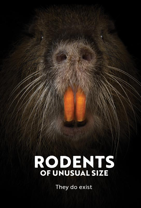 rodents-web-poster.jpg