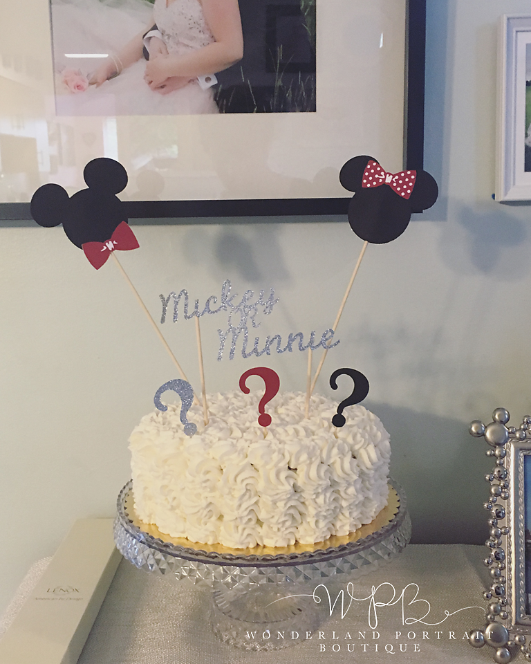 Mickey or Minnie Disney Gender Reveal WonderlandPortrait.com