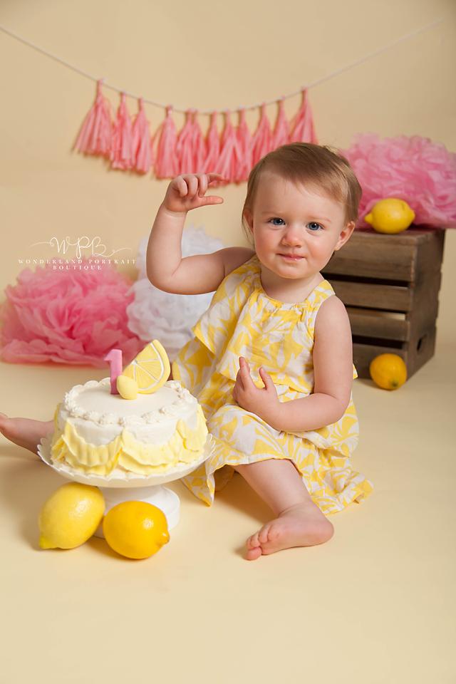Holland PA Cake Smash first birthday portraits