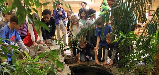 children by pond (2).jpg