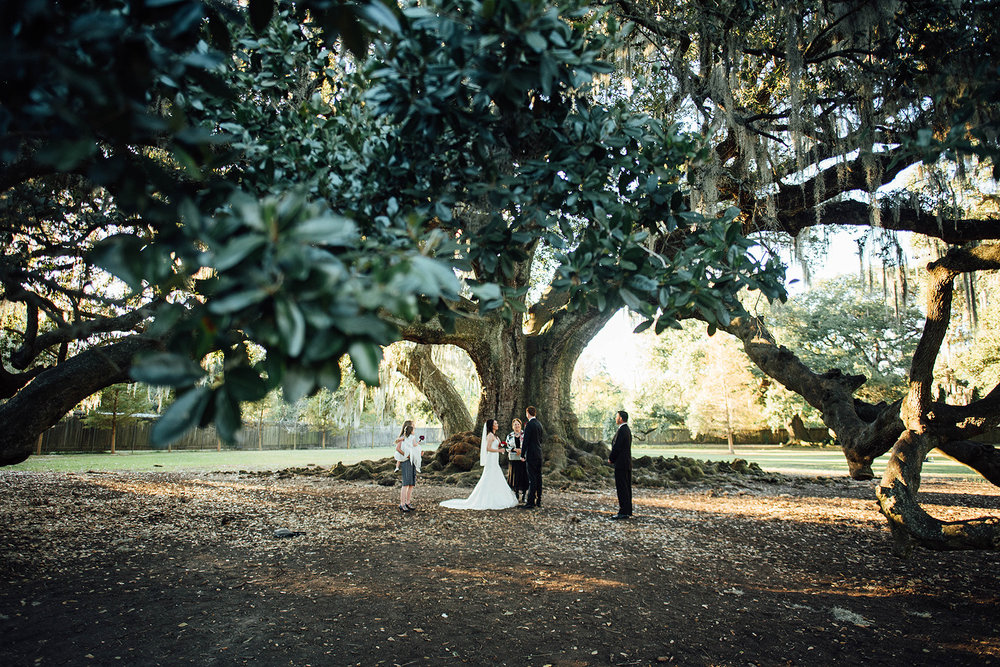 Lisa + Rock-Tree-of-Life-Audubon-Park-New-Orleans-Elopement-Photos_Online_0087.jpg
