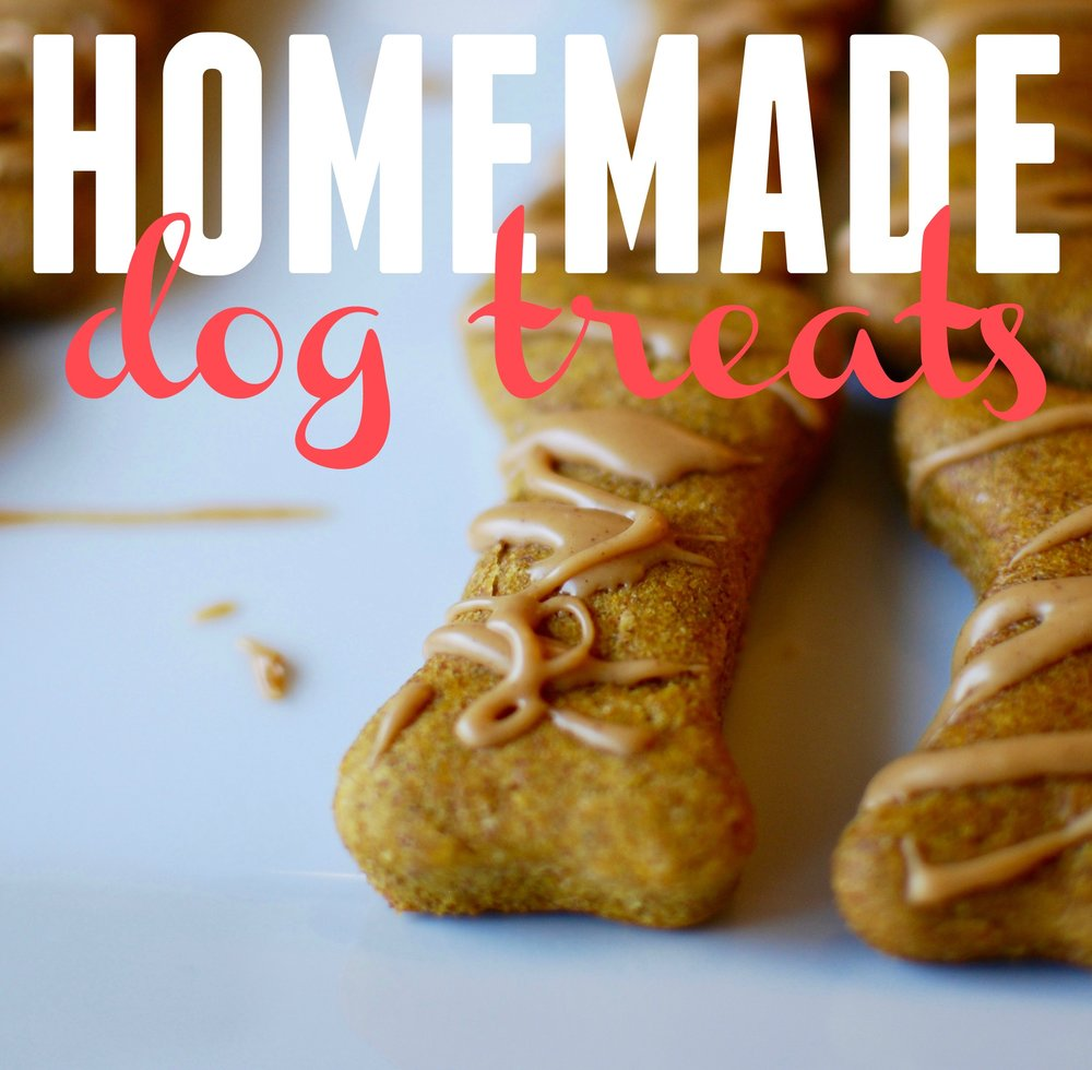 homemade-dog-treats_close-up_pin.jpg