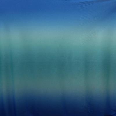 ps-coro-arBlue.jpg