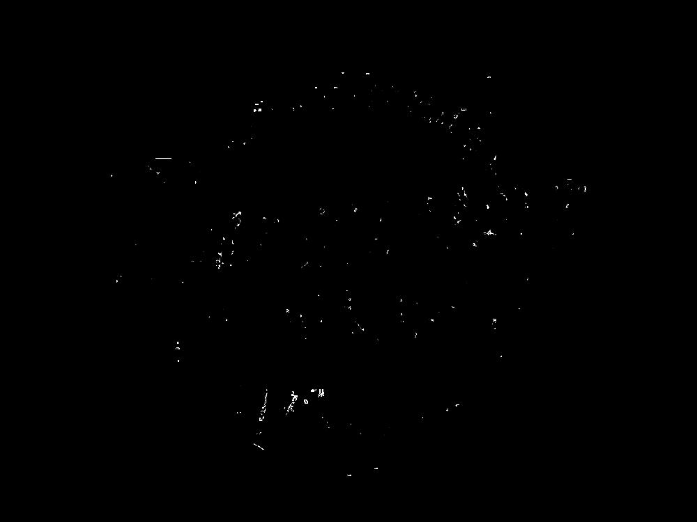 new logo bits.png