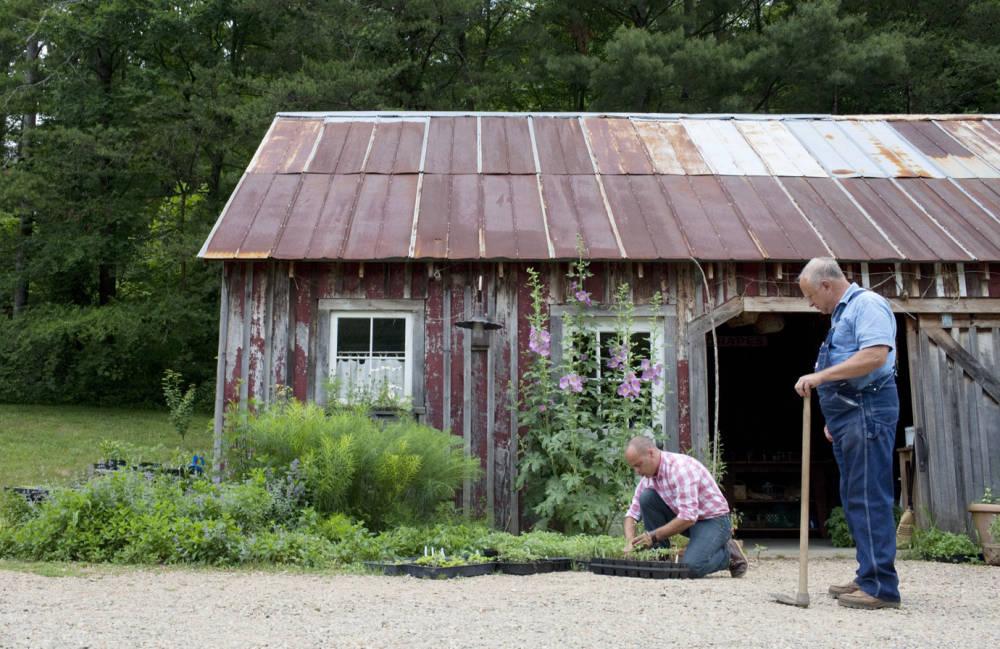 TCX-02-blackberry-farm-garden-shed-1012-xln-81008894-mv
