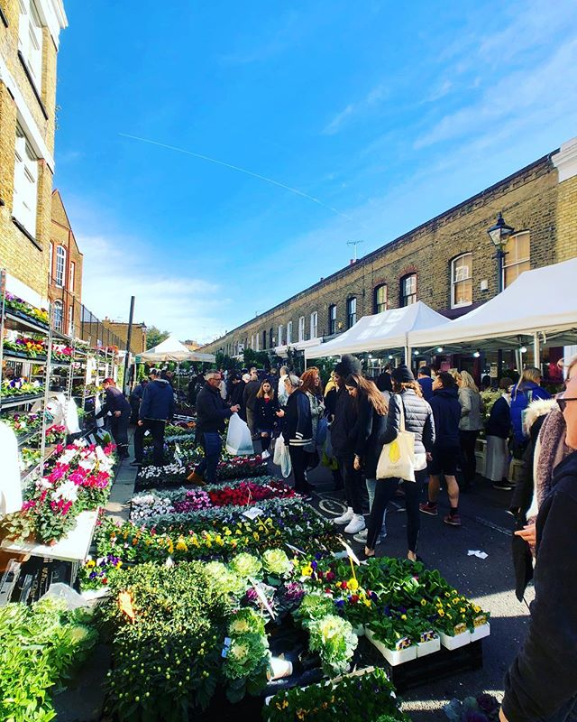 Columbia Road Flower Market is a must on Sunday's in Shoreditch #London. . . #ColumbiaRoadFlowerMarket #Shoreditch #EastLondon #LoveLondon #FlowerMarket