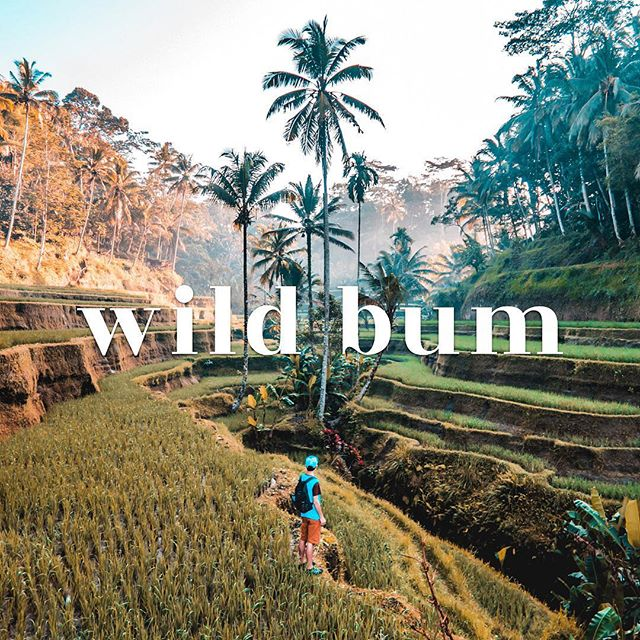 We have 11 of our current, crafted + comprehensive Travel Guides for purchase on www.wildbum.com. Check out @wild_bum and click the link in our bio to learn more about this growing, global and REAL travel platform! . . . . #travellove #travelholic #travelbug #wanderlust #travelers #travellers #travelmore #travelbetter #tripplanning #tripplanner #vacationplanning #travelnow