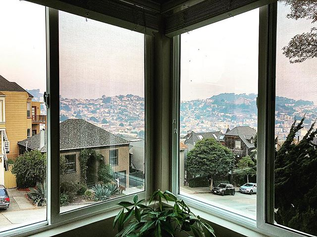 Always yearning for new views...@wild_bum . . . #airbnb #sanfrancisco #alwayssf #newviews #traveladdict #travelbug #travelholic #wildbumming