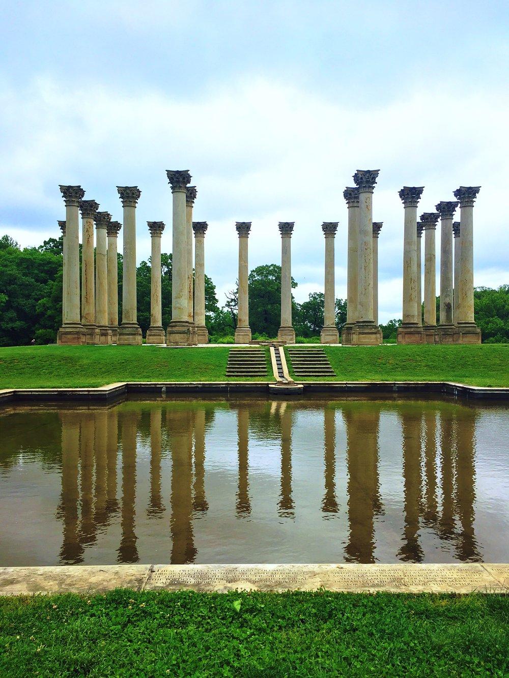 The National Arboretum in Washington DC
