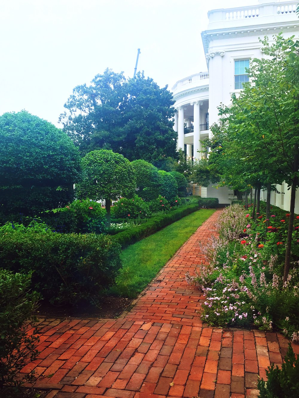 A view of the White House gardens from the East Wing.