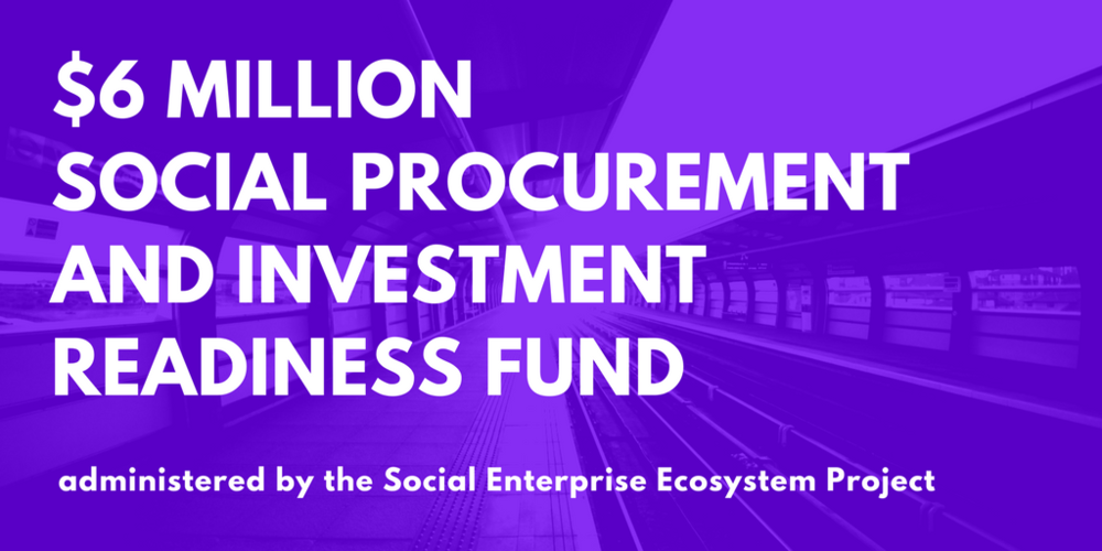 Procurement and Investment Readiness Fund.png