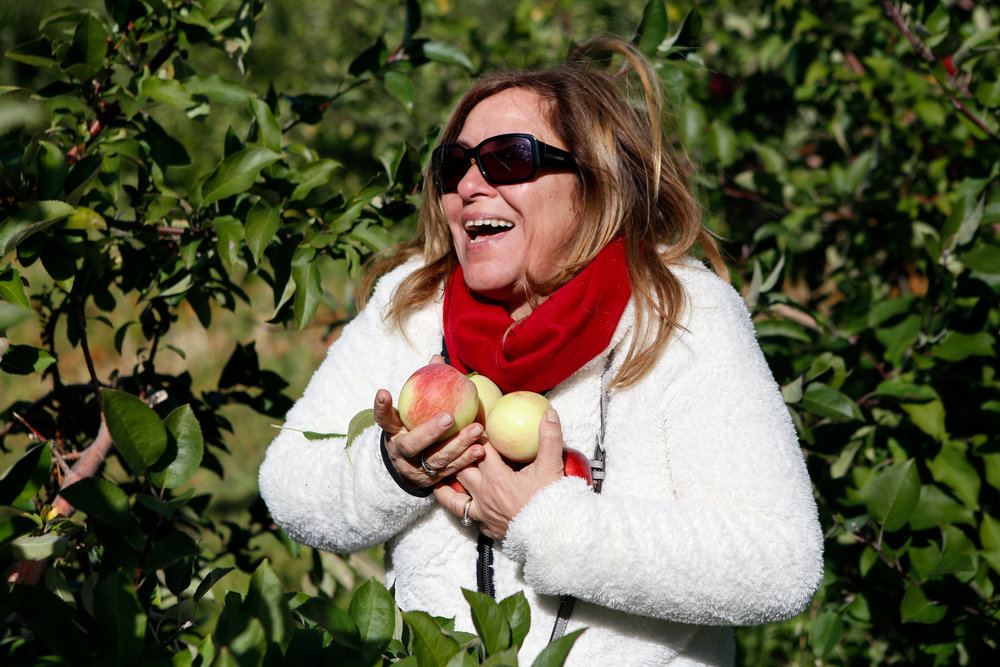 apple picking-2.jpg