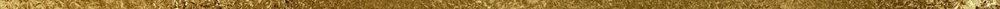 gold-divider.jpg
