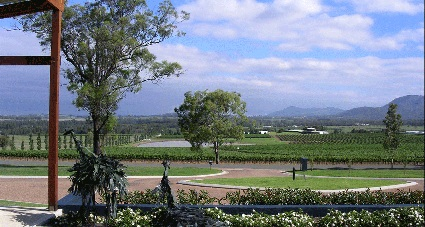 The Mill Restaurant View Hunter Valley.jpg