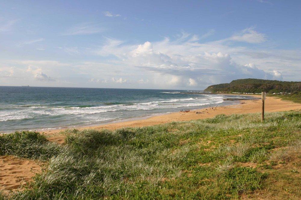 Shelly-Beach1.jpg