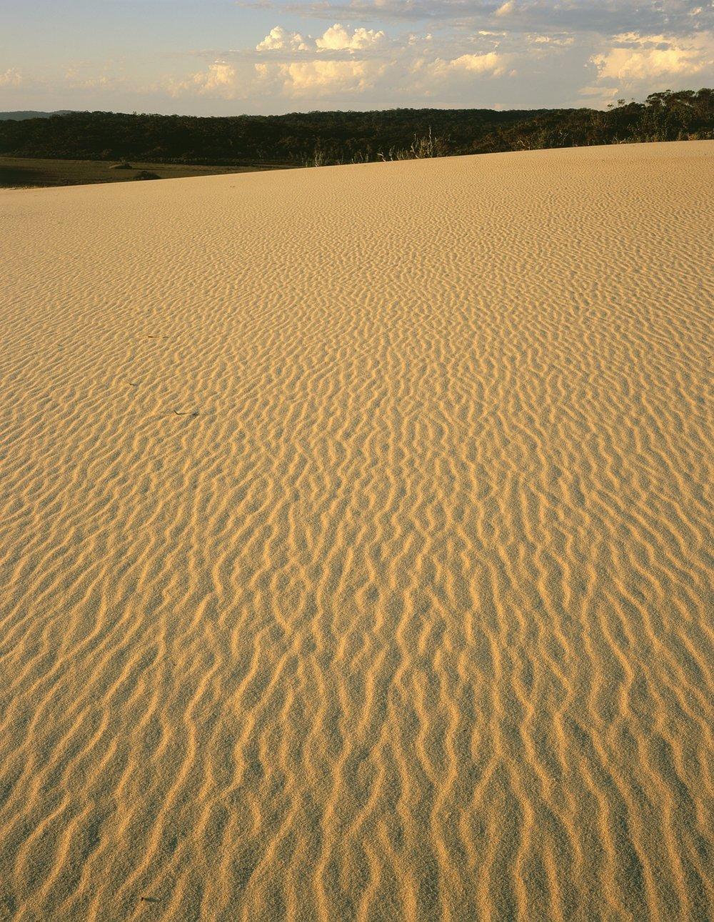 Tomaree sand dunes1.jpg