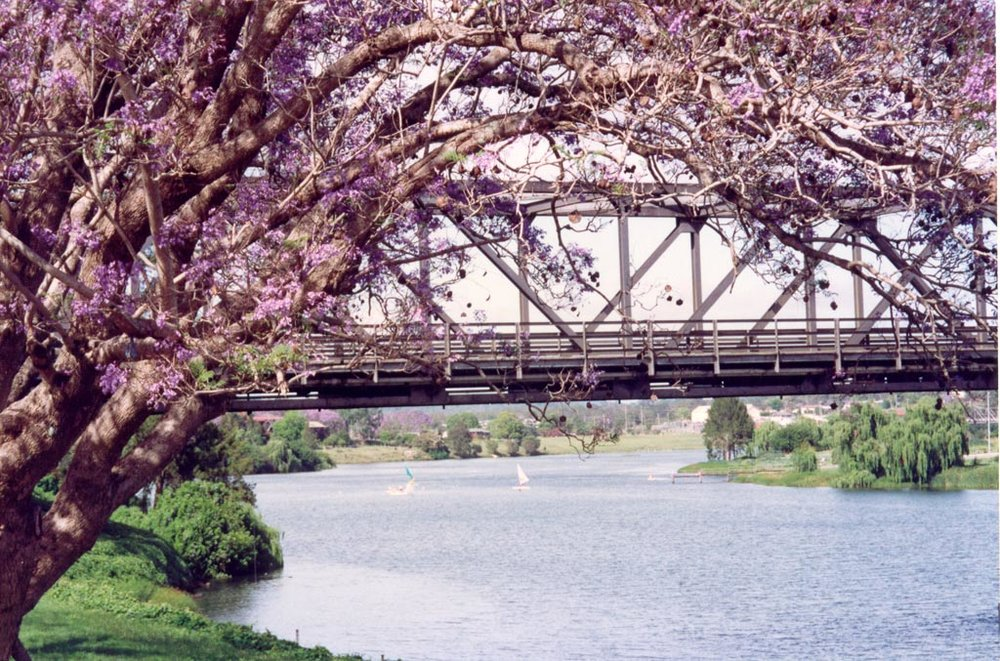 View of Bridge.jpg