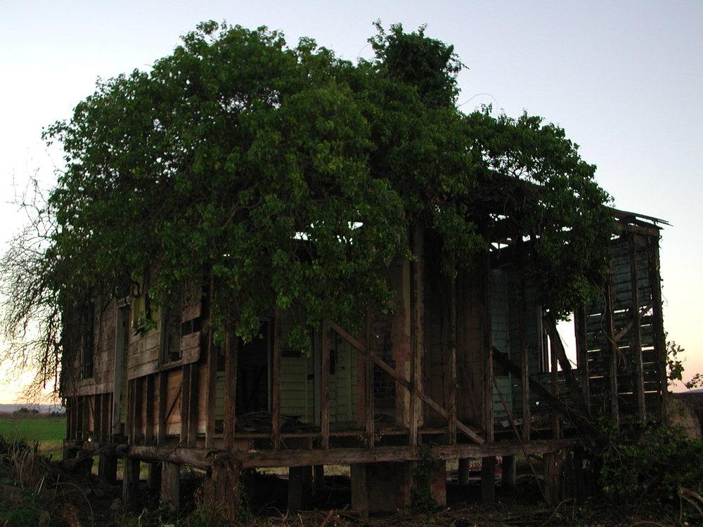 Derelict house, MCC 07018.JPG