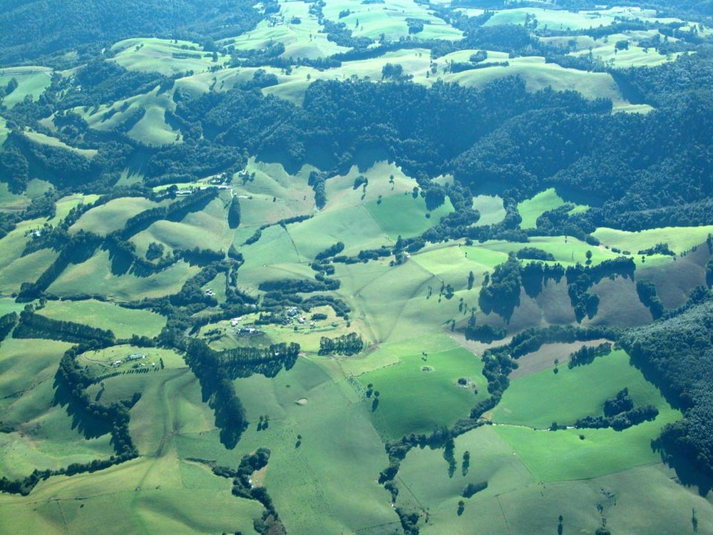 Dorrigo Plateau.JPG