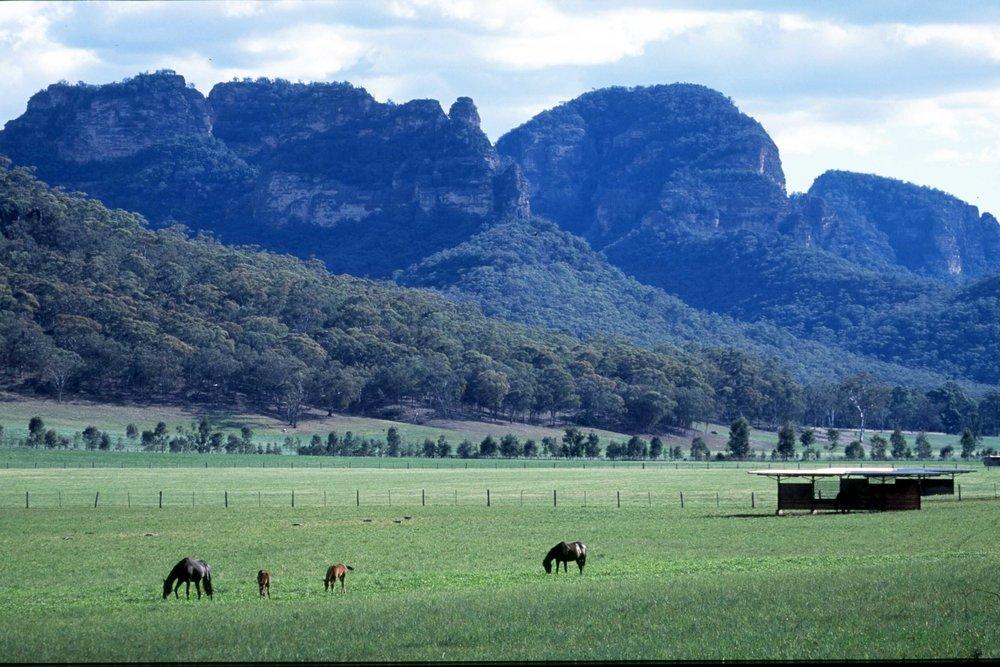 farm at Widden.jpg