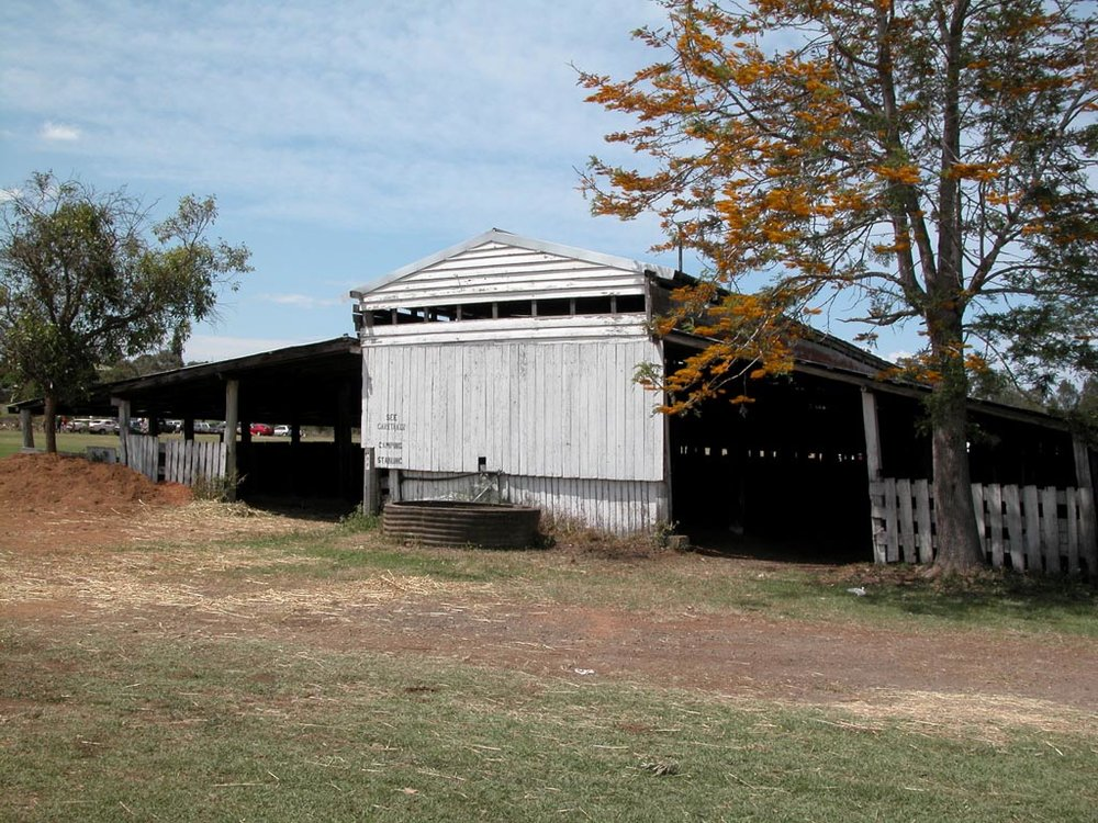 Taree Showground Stables 3.JPG