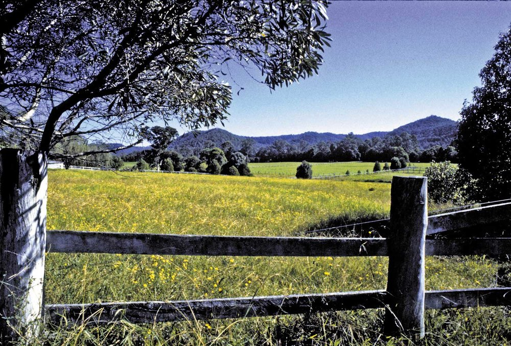 Valleys_country-fence---Hinterland.jpg