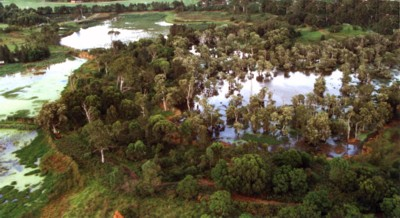 aerial Shortland.jpg