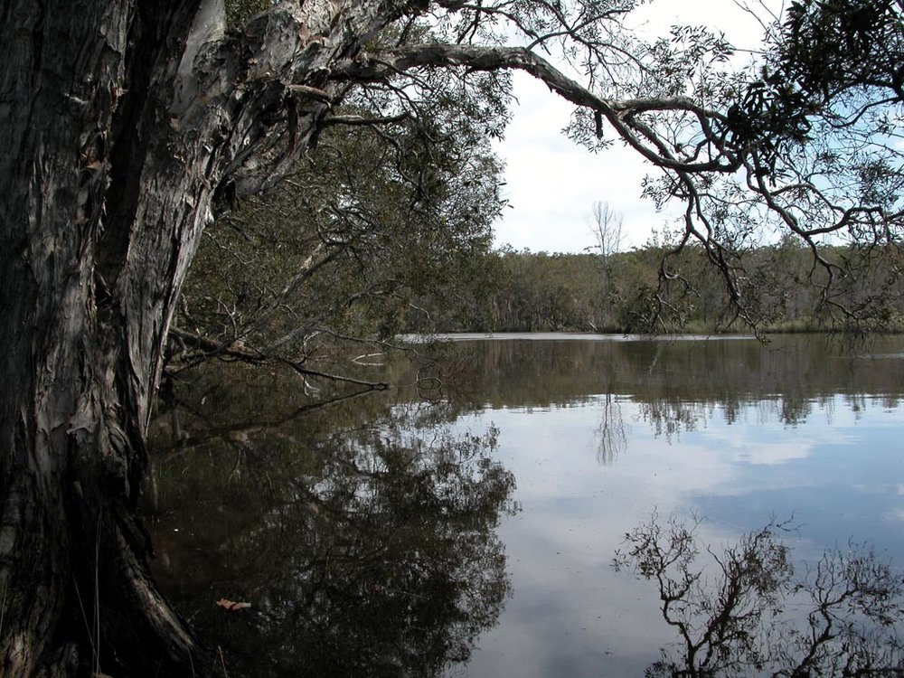 Lake Cathie001.JPG