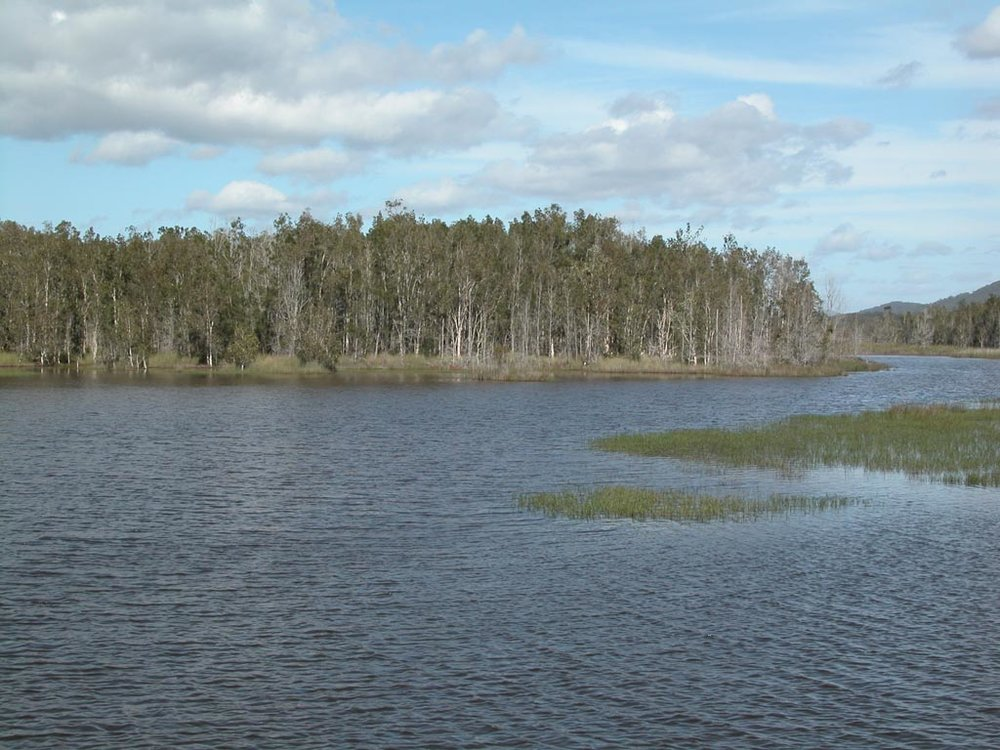 Lake Cathie009.JPG
