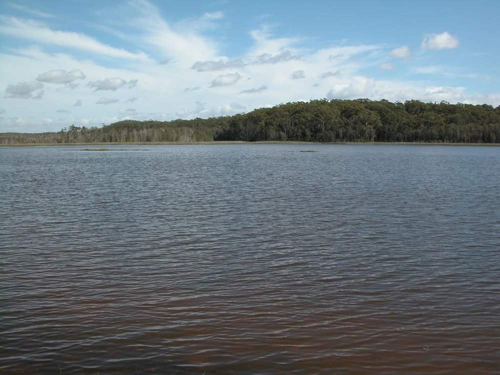 Lake Cathie015.JPG
