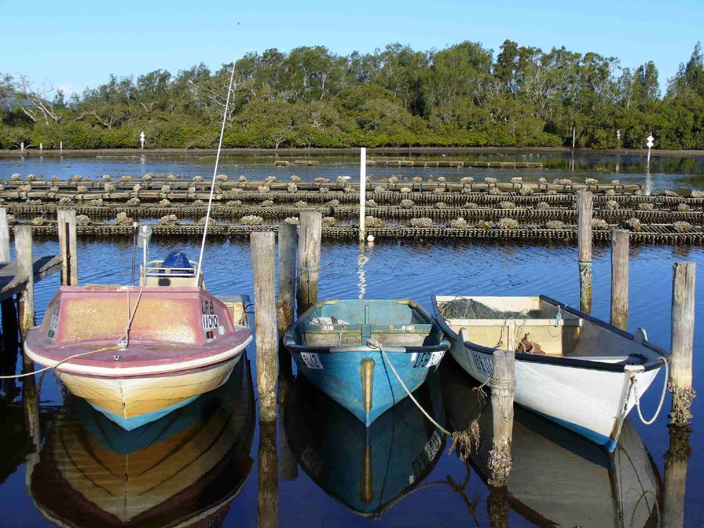 Point Rd Tuncurry Boats (1).jpg
