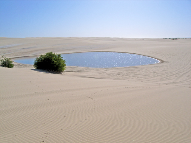Sand Dunes, WLC 15001.jpg