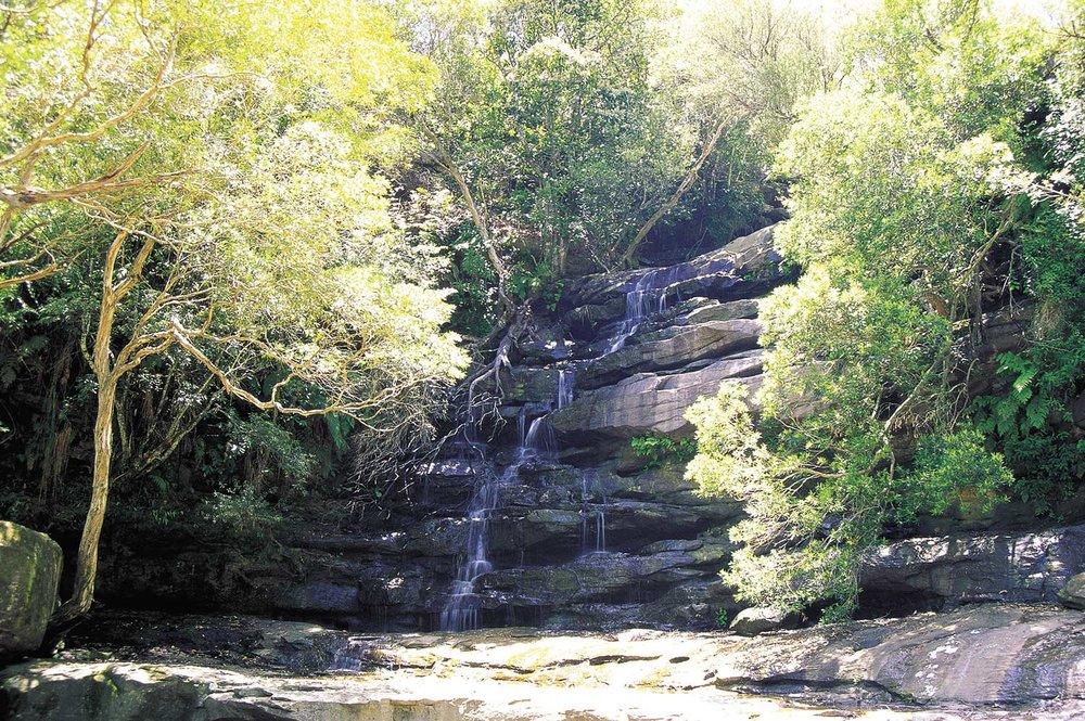 somersby-falls---Gosford.jpg