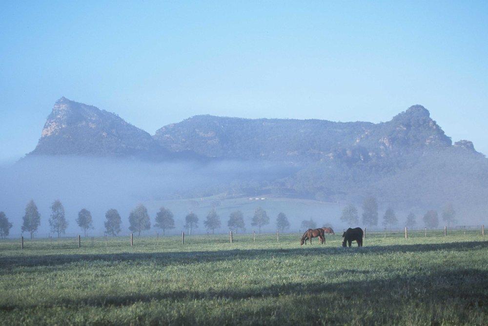 Widden farm, MSC 09000.jpg
