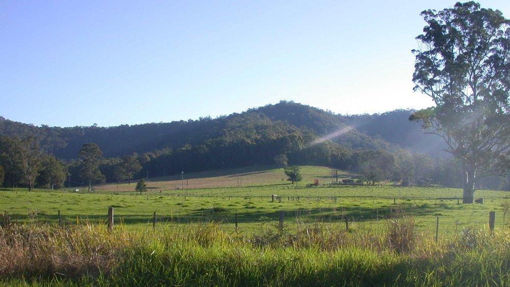Yarramalong Valley 3.JPG