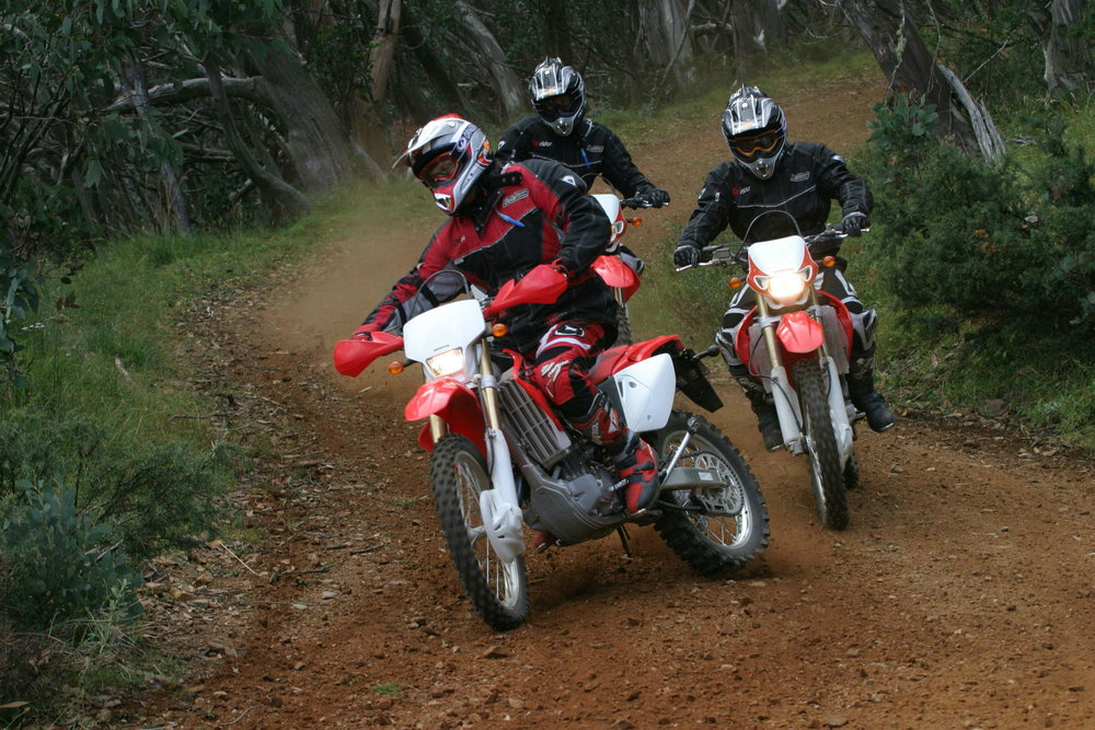CRF_Action_5.jpg