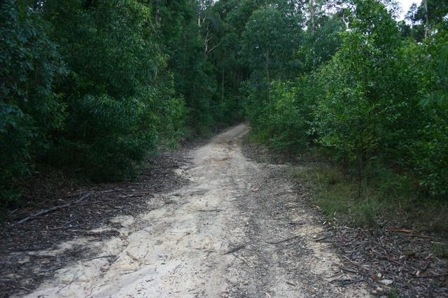 Oslands Rd nearby Fremans Waterhole.jpg