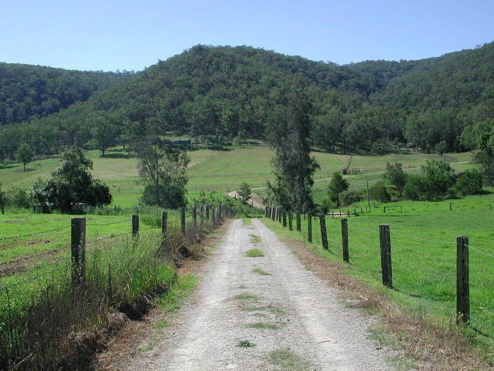 Wollombi Driveway.JPG