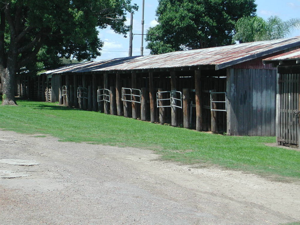 Old Stable, SC 13041.JPG