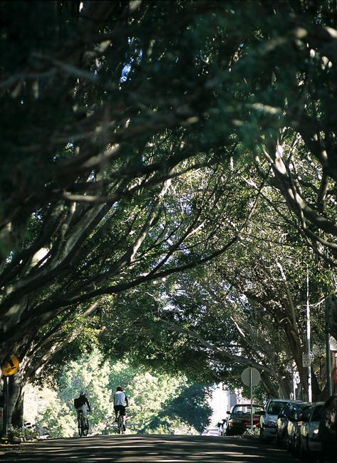 Laman Street.JPG