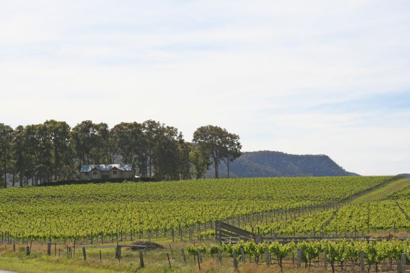 Echo Ridge Wines 2.jpg