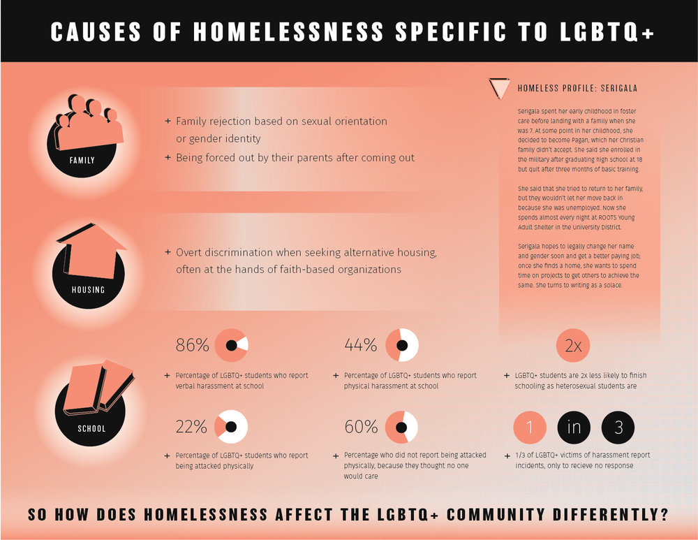 viscom 4 - homelessness graphics website-02.jpg