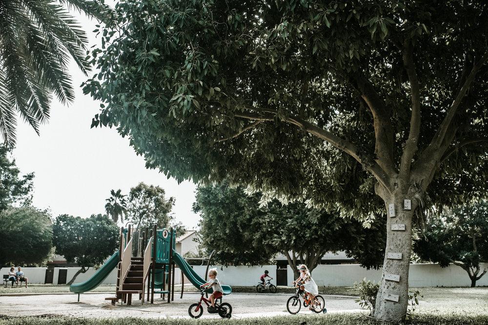 Circles at the park