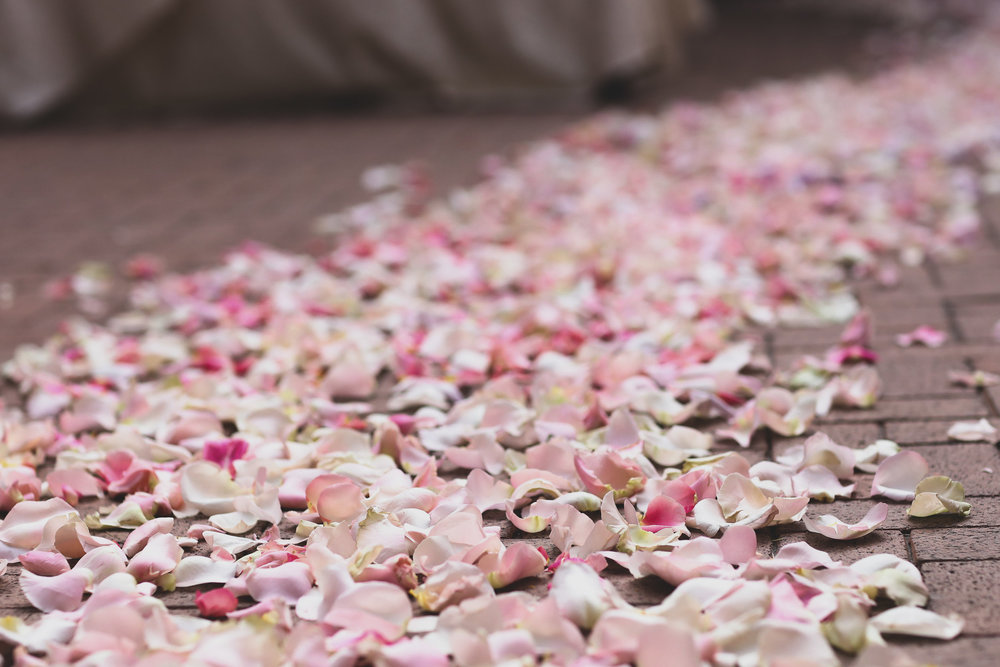 A pink rose petal bridal aisle at the Resort at Pelican Hill in Orange County for the bride to walk down.